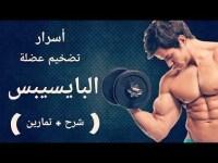 المدرب محمدمدينه الرياض معلومات طبيه + شرح تمرين باي داخلي وجانبي