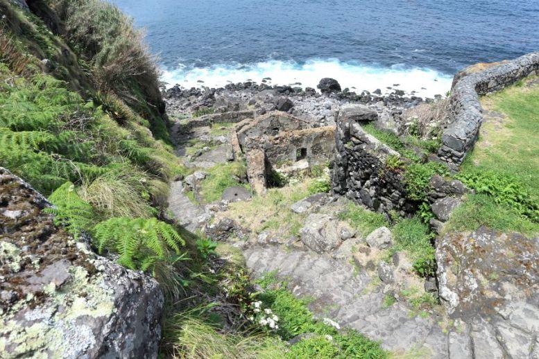 Küstenwanderung Sao Miguel (1)