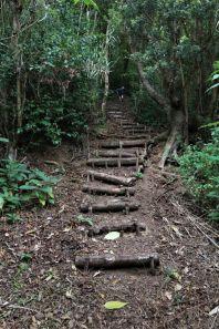 Wanderung bei Ribeirinha, Faial (5)