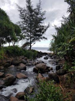 Erste Fliussüberquerung am Hanakapiai Beach