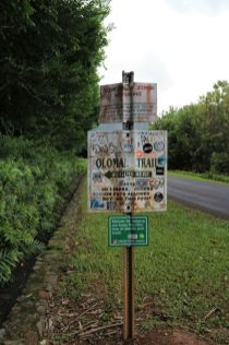 Olomana Trail (13)
