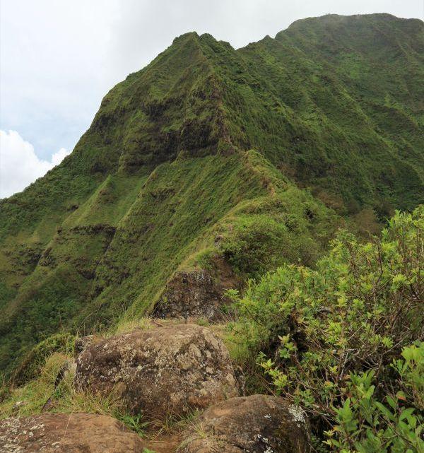 Pali Notches – eine Gratwanderung auf Oahu, Hawaii