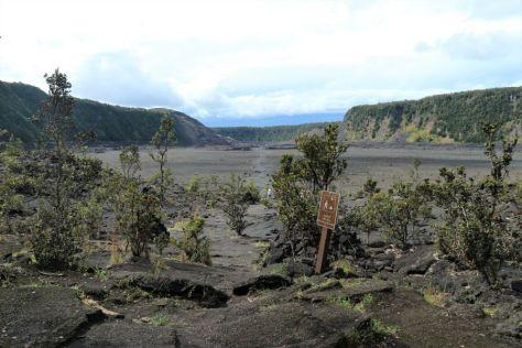 Kilauea Iki Trail Hawaii (3)