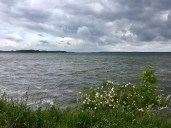 Am Kölpinsee bei Klink