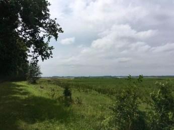 Blick zum Festland nach Lassan hinter Warthe