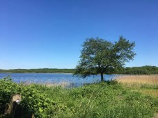 Blick zum Schaalsee in Niendorf