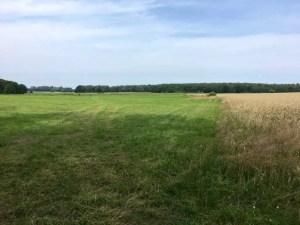 Felder bei Quilitz
