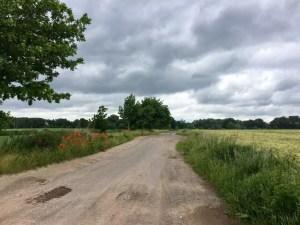 Feldweg vor Untergöhren