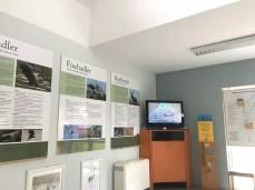 Fischadler live beobachten in Federow