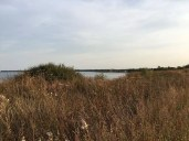 Auf der Steilküste mit Blick nach Boltenhagen