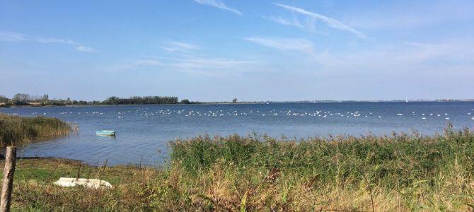 Wanderung an der Ostsee: Von Boltenhagen nach Wismar