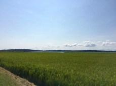 Blick vom Deich auf die Krumminer Wieck und zur Halbinsel Gnitz