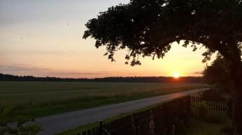 Sonnenuntergang auf dem Gut Solchstorf