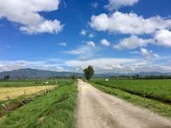 Feldweg auf einer unserer Mountainbiketouren