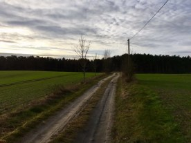 Auf dem Feldweg hinter Neuendorf geht´s auf die Halbinsel Gnitz