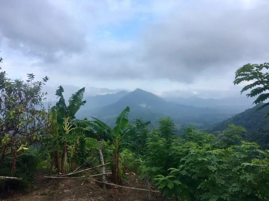 """Trekking in Kolumbien: Wanderung zur """"Verlorenen Stadt"""" (Tag 2 von 4)"""