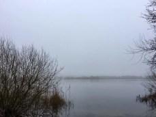 Blick auf den Kleinen Plöner See