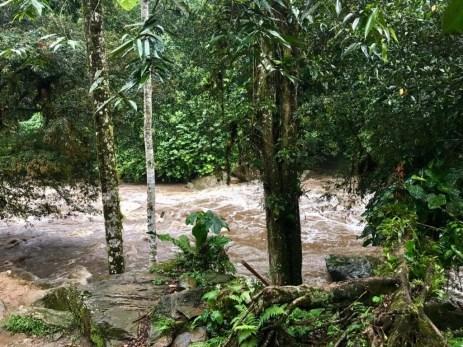 Der reißende Rio Buritaca nach dem Regen an Tag 2