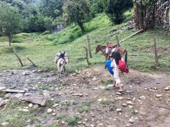 Ein indigener Tairona-Guide bei der Arbeit