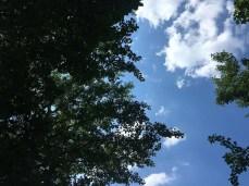 Tolles Juni-Wetter