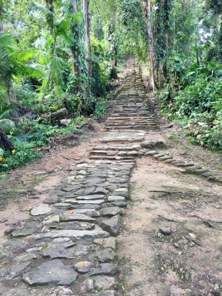 "Treppenweg in der ""Verlorenen Stadt"" (""Ciudad Perdida"")"