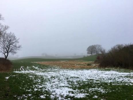 Winterliche Landschaft in der Holsteinischen Schweiz bei Plön