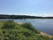 Kleine, idyllische Badebucht an der Elbe