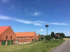 Storchennest an der Elbe