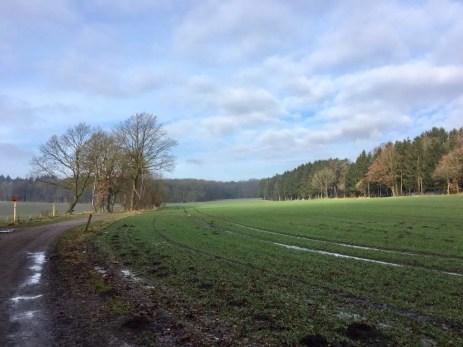 Winterliche Landschaft nördlich von Buchholz i.d. Nordheide