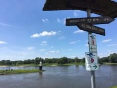 Die Elbe bei Niegripp