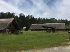 Im Steinzeitdorf Randau