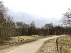 Radweg im Naturschutzgebiet Höltigbaum