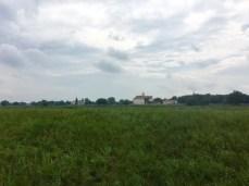 Blick über den Elbdeich nach Pretzsch (Elbe) und Schloss Pretzsch