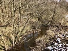 Die Wandse im Naturschutzgebiet Höltigbaum