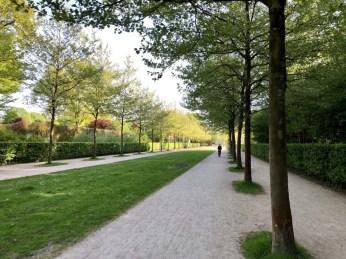 Die Allee auf der Nord-Süd-Achse des Hamburger Stadtparks