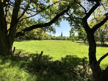 Im Naturschutzgebiet Boberger Niederung mit Blick zum Friedhof Billwerder mit dessen Kirche