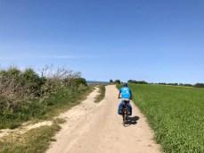 Ostseeradweg an der Steilküste bei Wustrow / Darß