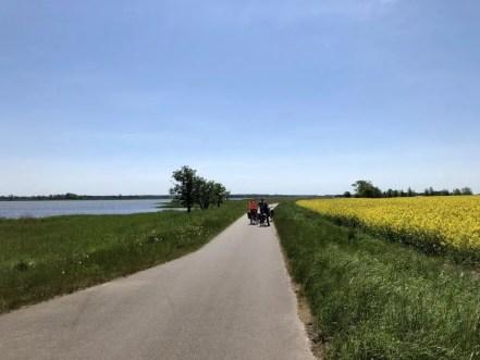 Auf dem Radweg bei Barth
