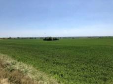 Landschaft bei Barth in Vorpommern