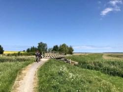 Radweg über Wiesen und Felder östlich von Barth