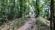 Wanderweg auf dem Mittelrhein-Klettersteig