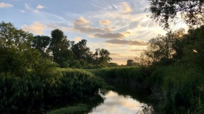 Abendliche Stimmung im Naturschutzgebiet Heuckenlock in Hamburg Moorwerder