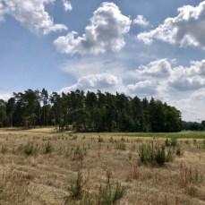 Landschaft bei Wangelkow in Vorpommern