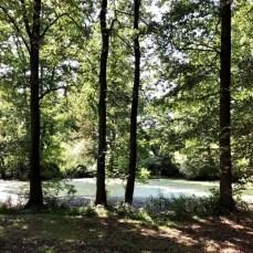 Teich am Schloss Buggenhagen