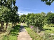 Verbindungsweg von Jamitzow nach Buggenhagen