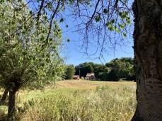 Schwedisches Sommerhäuschen in idyllischer Landschaft