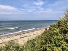 Der wilde Strand zwischen Rerik und Kühlungsborn