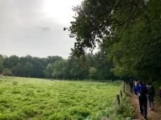 Gruppenwanderung auf dem Drägerweg bei Lübeck