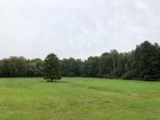 Landschaft am Drägerweg