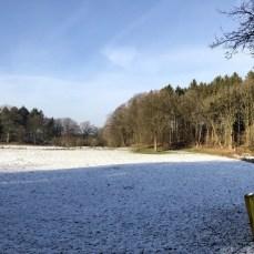 Winterlandschaft bei Belau